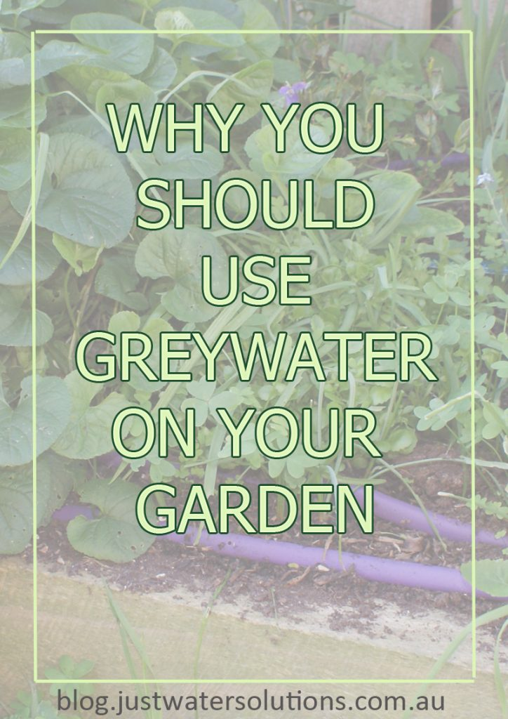 why you should use greywater on your garden